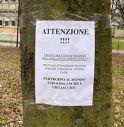 Bocconi avvelenati a Montebelluna
