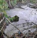 Schiuma sospetta nel torrente Raboso a Sernaglia