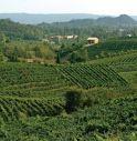 Passa la legge sulla candidatura Unesco per le colline del Prosecco