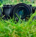 foto e natura