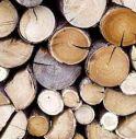 Rubano 25 bancali di legna da ardere: identificati e denunciati