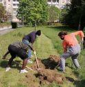 I Ribelli all'Estinzione durante la piantumazione di alberi