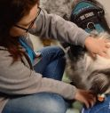 Onlus Carolina Treviso pet-therapy