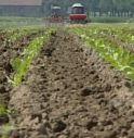 Su dieci aziende agricole solo una arriva alla terza generazione