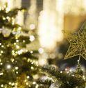 Natale, 12 milioni di alberi nelle case degli italiani. Ma più della metà è sintetico