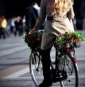 Rifiuti, qualità dell'aria e depurazione acqua, i problemi di Treviso