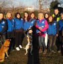 Costretti a lasciare il rifugio di Sarano, cani e volontari cercano casa