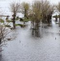 Europa sott'acqua, allerta per il Danubio