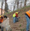 Cercasi volontari per la giornata ecologica a Vedelago