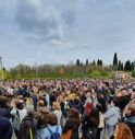 Bonaldo e la nuova manifestazione: