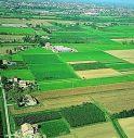 Legambiente: Pianura Padano-Veneta in testa per rischio nitrati