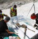 Ghiacciaio restituisce mummia di un camoscio di 400 anni