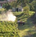 Barricati in casa contro i pesticidi