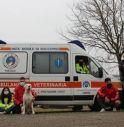 L'ambulanza veterinaria con i volontari FISA