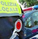 polizia locale conegliano 2017