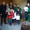 Dai rifiuti 40 alberi di Natale