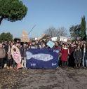 Le Sardine venete: protagoniste della società civile