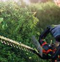 Lineonline.it è l'e-commerce Brico&Garden che offre top brand ai prezzi più bassi e spedizione in 24 ore