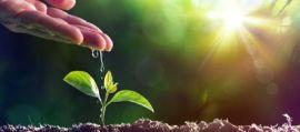 Sos suolo, non è rinnovabile e lo stiamo perdendo. Nasce la fondazione Re Soil.