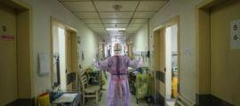 Coronavirus, ricostruita la storia della pandemia