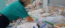 Epidemia virus respiratorio in neonati, è allarme: ospedali italiani pieni