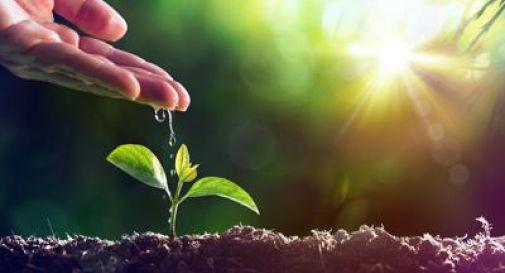 Al via la prima azione Farming For Future, il decalogo del Cib.