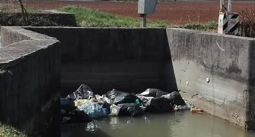 Sacchi di rifiuti nel canale a Trevignano: arrivano ratti e nutrie