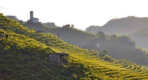 Pronta a nascere l'associazione per il patrimonio delle colline del Prosecco di Conegliano e Valdobbiadene
