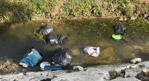 Il canale Loschetto disseminato di sacchi della spazzatura