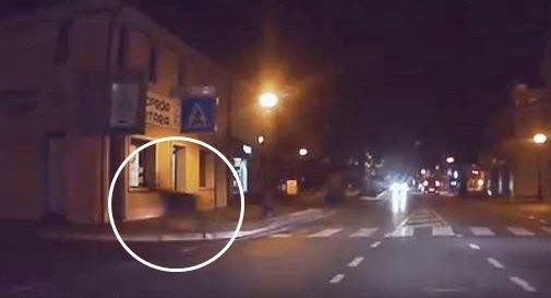 Cervo corre per strada in centro a Montebelluna, ecco il video