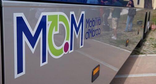 Mom, azienda di trasporto marca trevigiana