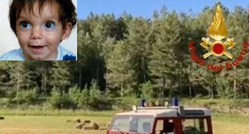 Bimbo di 21 mesi scomparso nei boschi