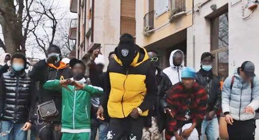 Pluto Gang
