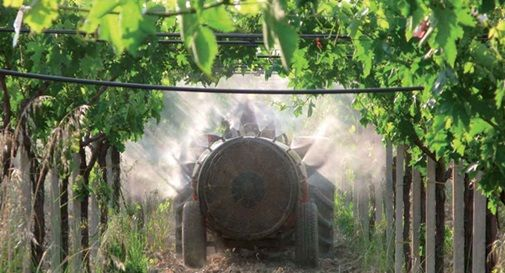 """""""Stop pesticidi per fare pace con la natura"""": flash Mob Wwf per l'agricoltura sostenibile"""