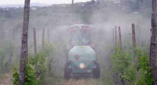 Finisce in ospedale dopo essere stata investita da una nuvola di pesticidi