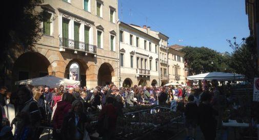 Fiori mercatini e cibo esplode la primavera in citt for Mercatini veneto oggi