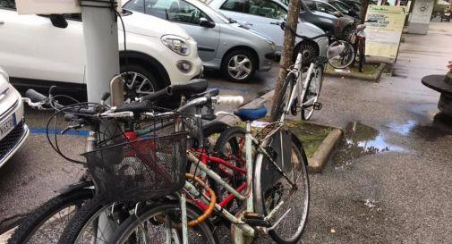 Biciclette a Conegliano