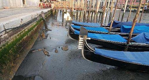 Acqua bassa a Venezia, previsti -40 cm