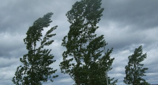Il maltempo non molla, stato di attenzione in Veneto per forte vento