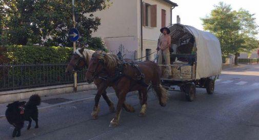 A Pieve qualcuno si sposta (ancora) con carretto e cavalli