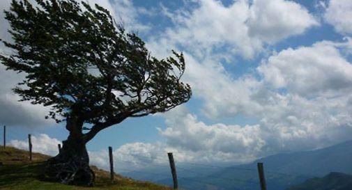 Stato di attenzione per forte vento in Veneto