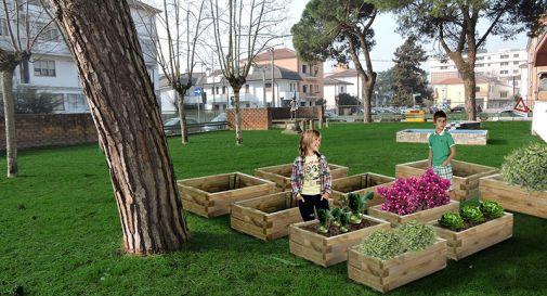 Arredo Giardino Provincia Treviso.Orti Didattici E Nuovi Alberi Nei Giardini Di 5 Scuole Elementari