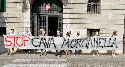 Stop cava Morganella