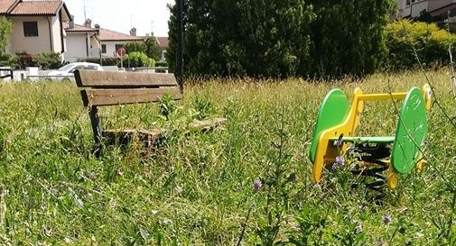 """Giochi e panchine sommersi dall'erba: """"È da un mese che chiediamo lo sfalcio"""""""