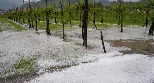 Farra di Soligo, grandine e forte pioggia: strade e campi imbiancati