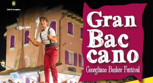 Gran Baccano Festival