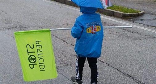 Immagine di repertorio della Marcia Stop Pesticidi 2019