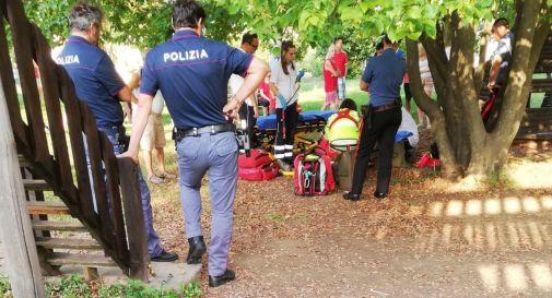 Cade da un albero mentre gioca con gli amichetti al parco, grave bambino di 7 anni