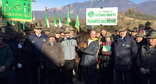 Grande festa per i 40 anni di Iroso, l'ultimo mulo alpino