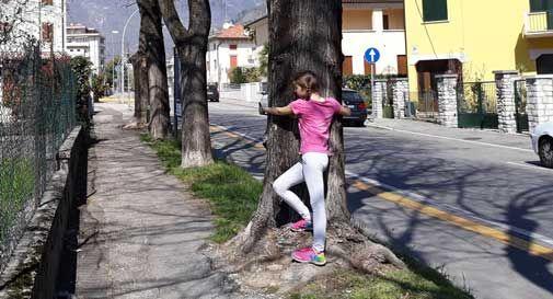 La bimba abbraccia gli alberi nei giorni in cui vengono tagliati, il papà pubblica la foto: